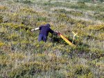 Andy Fowles showing how to retrieve a model in lush gorse